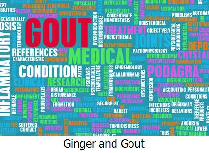 Ginger and Gout