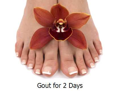 Gout for 2 Days