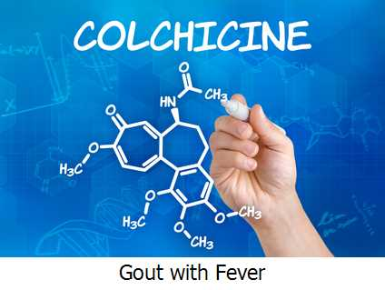Gout with Fever