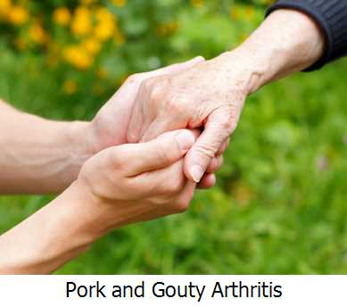 Pork and Gouty Arthritis
