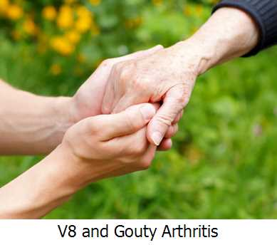 V8 and Gouty Arthritis